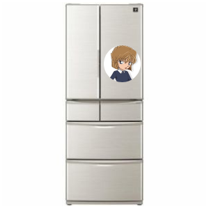 冷蔵庫「灰原」